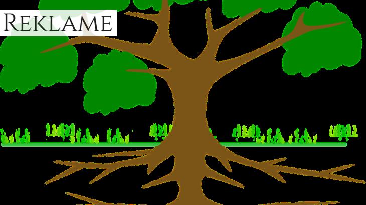 tree-309046_960_720